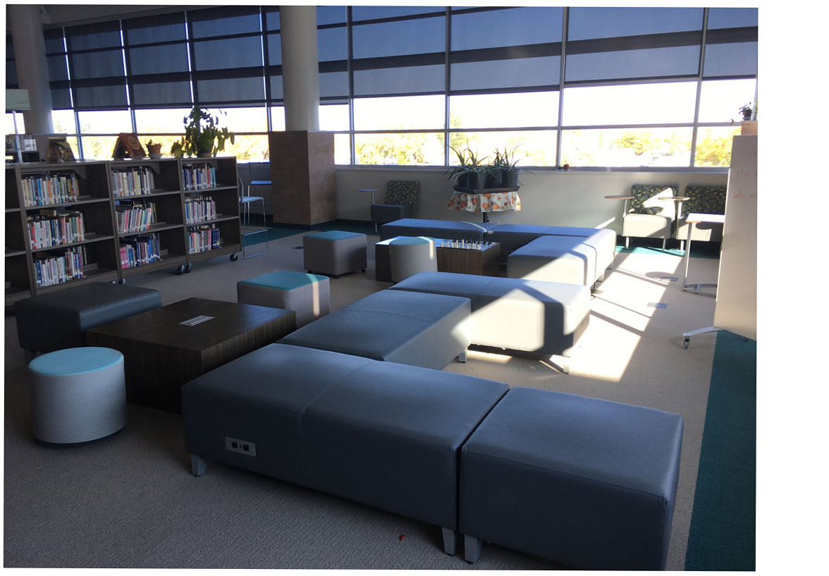 Deming Library Hs